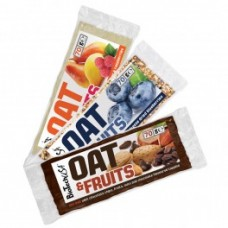 Biotech Oat & Fruits 20x70 g.