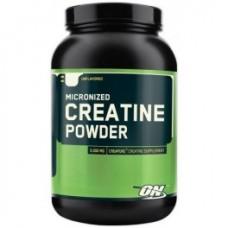 Optimum Nutrition Creatine Powder 600 g.